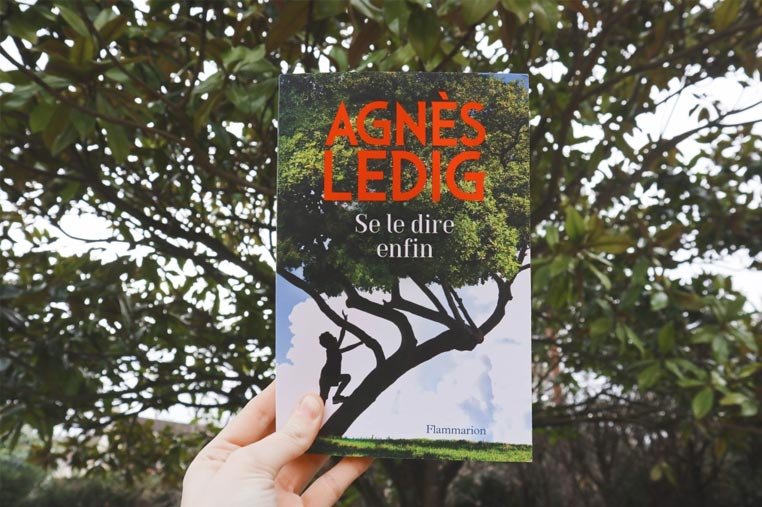Avis lecture Se le dire enfin d'Agnès Ledig