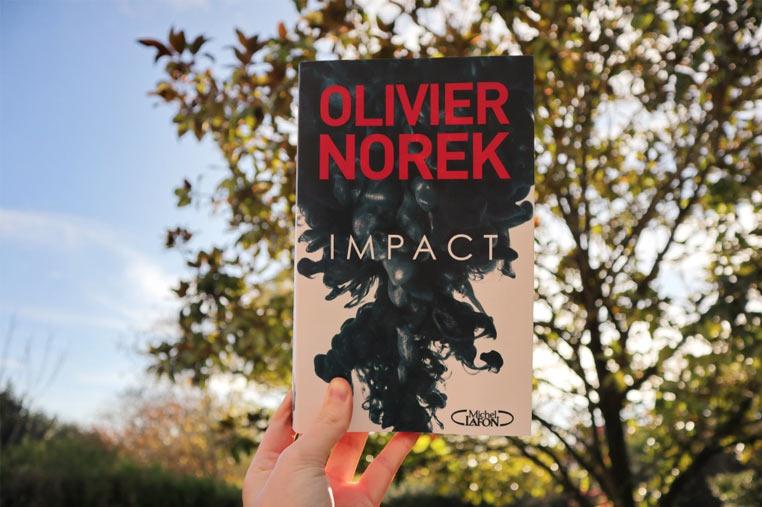 Avis lecture Impact d'Olivier Norek