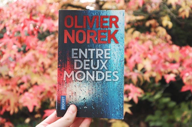 Avis lecture Entre deux mondes d'Olivier Norek